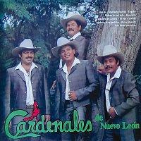 Cardenales De Nuevo León – Y Qué Más Da