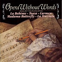André Kostelanetz & His Orchestra, Columbia Symphony Orchestra, New York Philharmonic – Opera Without Words