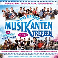 Různí interpreti – Das grosze Musikantentreffen - Folge 37