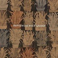 Iron & Wine – Waves of Galveston