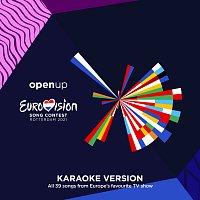 Různí interpreti – Eurovision Song Contest Rotterdam 2021 [Karaoke Version]