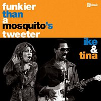Ike & Tina Turner – Funkier Than A Mosquito's Tweeter