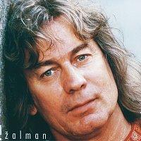 Zalman – Vyber nejlepsich nahravek - 2CD