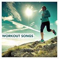Různí interpreti – Workout Songs