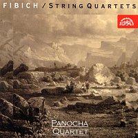 Přední strana obalu CD Fibich: Smyčcové kvartety, Variace