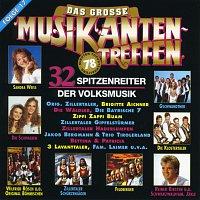 Různí interpreti – Das grosse Musikantentreffen / Folge 17