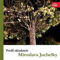 Různí interpreti – Profil skladatele Miroslava Juchelky