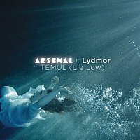 Arsenal, Lydmor – Temul (Lie Low)