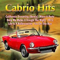 Různí interpreti – Cabrio Hits
