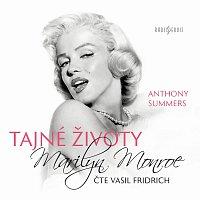 Vasil Fridrich – Summers: Tajné životy Marilyn Monroe
