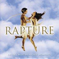 Různí interpreti – Rapture