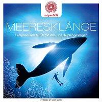 Davy Jones – entspanntSEIN - Meeresklange (Entspannende Musik mit Wal- und Delphingesangen)