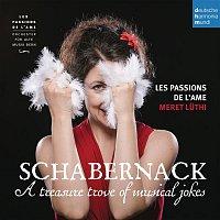 Les Passions de l'Ame, Heinrich Ignaz Franz Biber, Meret Luthi – Schabernack - A Treasure Trove of Musical Jokes
