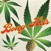 Různí interpreti – Bong Hits