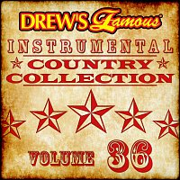 The Hit Crew – Drew's Famous Instrumental Country Collection [Vol. 36]