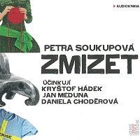 Kryštof Hádek, Jan Meduna, Daniela Choděrová – Zmizet (MP3-CD)