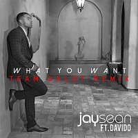 Jay Sean, Davido, Team Salut – What You Want (Team Salut Remix)