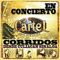 Cártel De Sinaloa – En Concierto-Corridos Desde Culiacán, Sinaloa