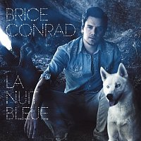 Brice Conrad – La nuit bleue