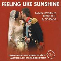 Přední strana obalu CD Feeling Like Sunshine