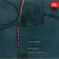 Různí interpreti – Pauer: Canto triste, Tausinger: Ave Maria, Musica evolutiva
