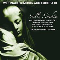 Cappella Istropolitana, Monika Mauch, Nathalie Gaudefroy, Stephan Haas – Stille Nachte - Weihnachtsmusik aus Europa, Vol. III - Silent Nights