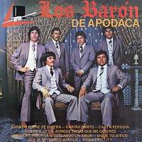 Los Barón De Apodaca – Carino Santo