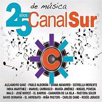 Alejandro Sanz – Canal Sur. 25 anos de música