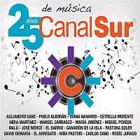 Various Artists.. – Canal Sur. 25 anos de música