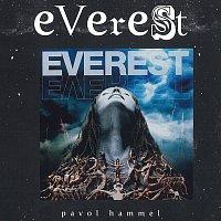 Přední strana obalu CD Everest