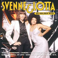 Přední strana obalu CD 20 Golden Hits