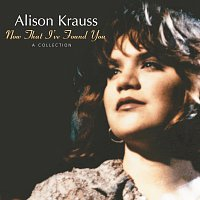Alison Krauss – Now That I've Found You: A Collection