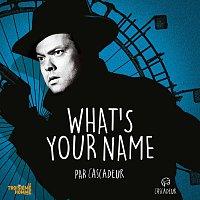 Cascadeur, Glen Campbell – What's Your Name [BOF Le troiseme homme]