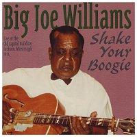 Big Joe Williams – Shake Your Boogie
