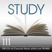 Různí interpreti – Study: 111 Pieces Of Classical Music While You Work