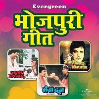Různí interpreti – Evergreen Bhojpuri Hits