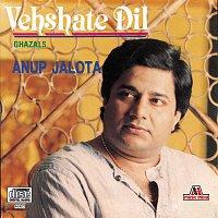 Anup Jalota – Vehshate Dil