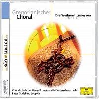 Benedictine Monks of the Abbey Munsterschwarzach, Pater Godehard Joppich – Gregorianischer Choral