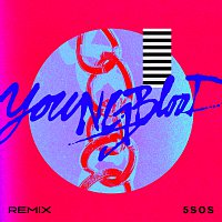5 Seconds of Summer – Youngblood [R3HAB Remix]