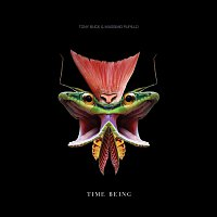 Massimo Pupillo, Tony Buck – Time Being