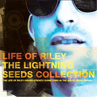 Lightning Seeds – Life Of Riley - The Lightning Seeds Collection