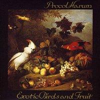Procol Harum – Exotic Birds and Fruit