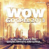 Various Artists.. – WOW Gospel 2013