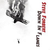 Steve Forbert – Down In Flames