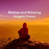 Různí interpreti – Mellow and Relaxing Acoustic Covers