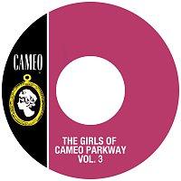 Přední strana obalu CD The Girls Of Cameo Parkway Vol. 3