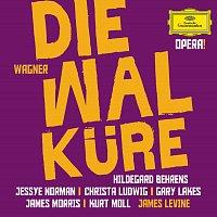 Hildegard Behrens, Jessye Norman, Gary Lakes, Kurt Moll, James Levine – Wagner: Die Walkure