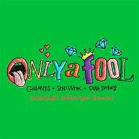 Galantis, Ship Wrek & Pink Sweat$ – Only A Fool (with Pink Sweat$) [Marshall Jefferson Remix]