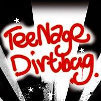 Různí interpreti – Teenage dirtbag