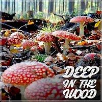 Ben Hoo – Deep in the Wood